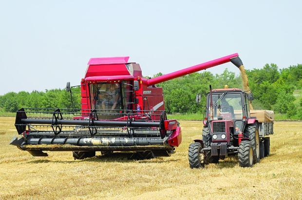 Започна жътвата на пшеница в Русенско