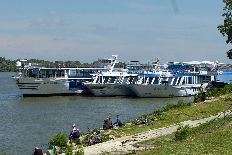 фарватера на Дунав не трябва да пада под 2,5 м