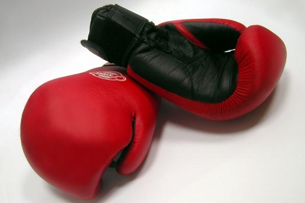 Трима русенски боксьори