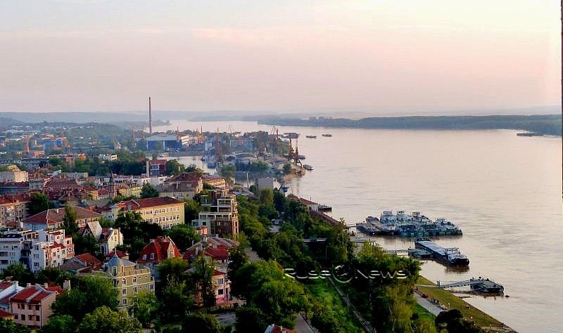 спасиха сърна от удавяне в Дунав