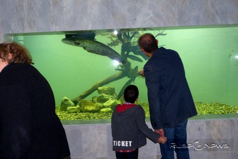 Екомузеят е туристически обект №1 в Русе