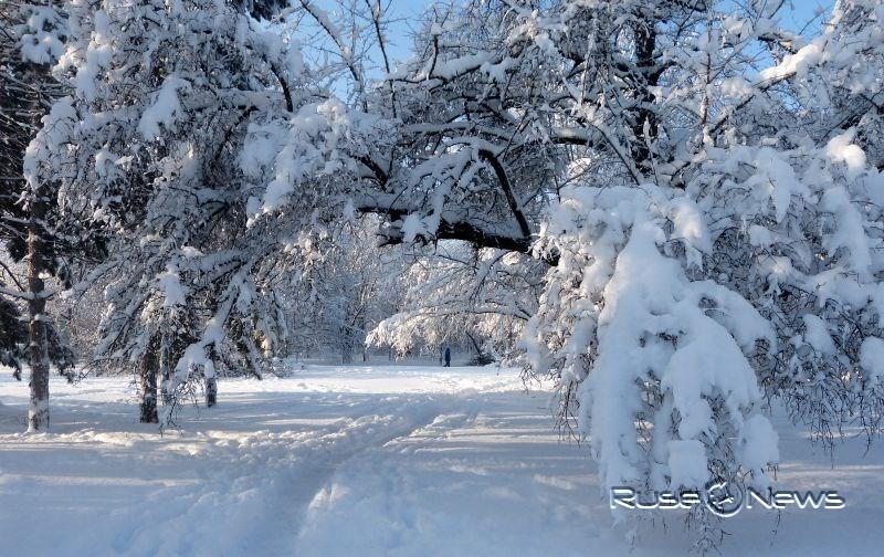 очакваме красива и снежна Коледа