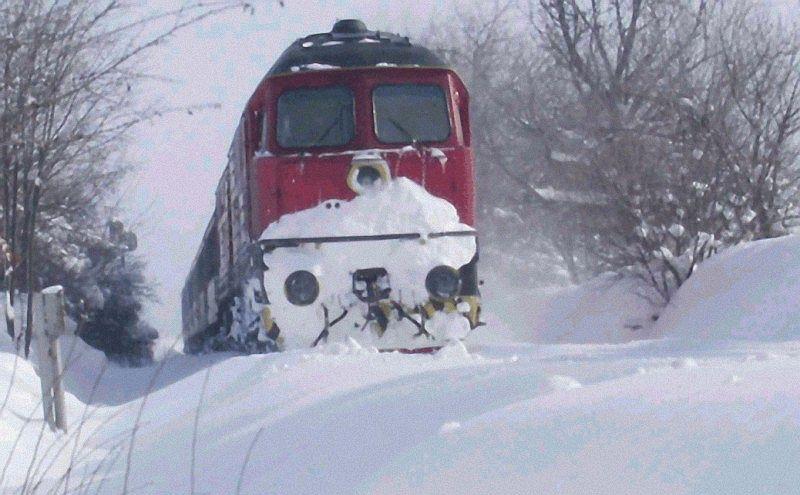 Влакът от София за Силистра