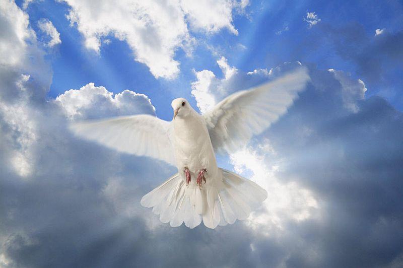 почитаме Светия Дух
