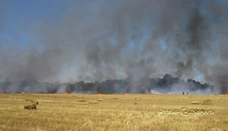 Запалени стърнища край Гюргево