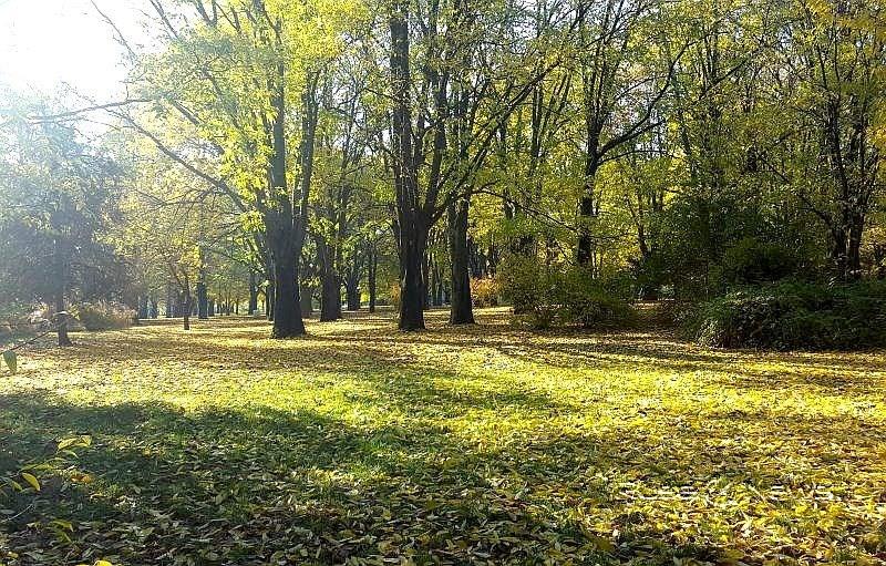 В България настъпи астрономическата есен