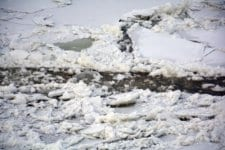 Дунав край Силистра замръзна