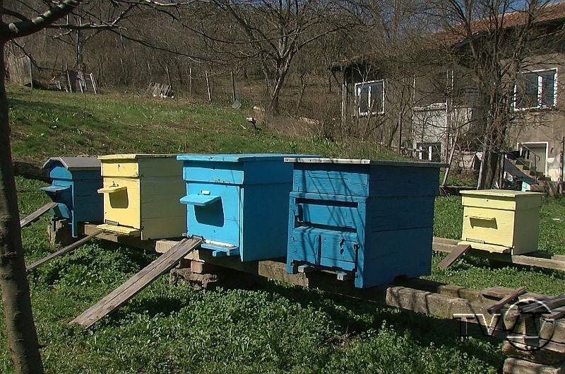 Пчеларите утре да приберат кошерите