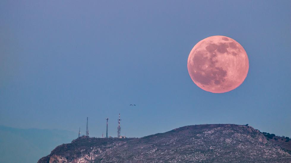 """""""Розова"""" луна"""