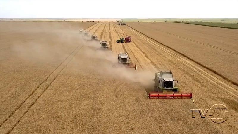 Богат урожай радва земеделците от Русенско
