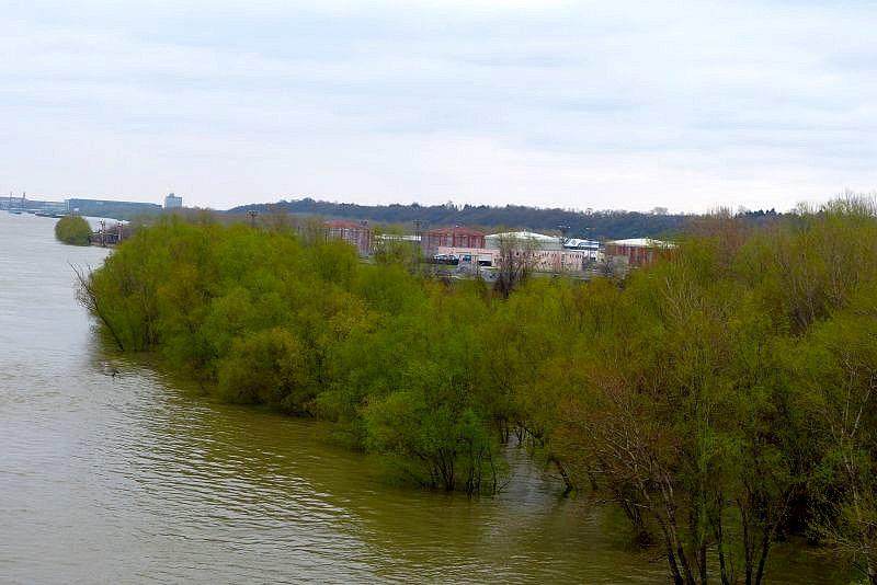 Нивото на Дунав