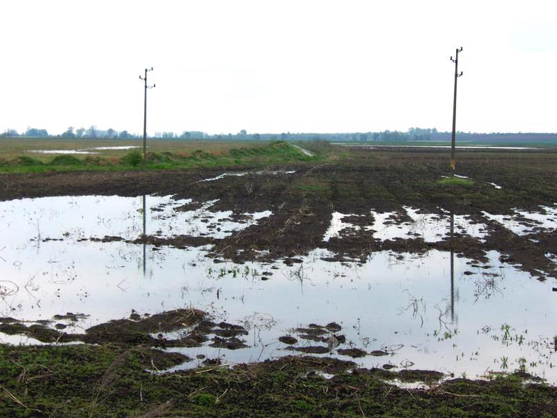 Проблемът с наводнените земи