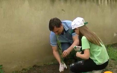 Ученици засадиха дръвчета в двора