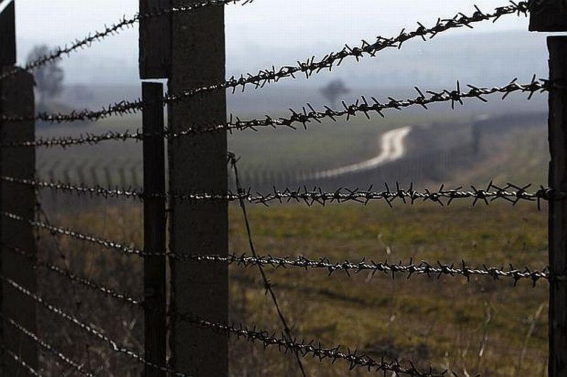 Телена ограда ще спира африканската чума