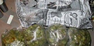 дилъри на дрога и незаконен алкохол