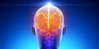 Учени откриха ключа към творческото мислене