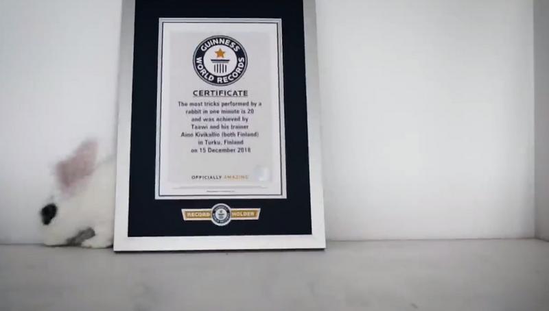 Зайче постави световен рекорд