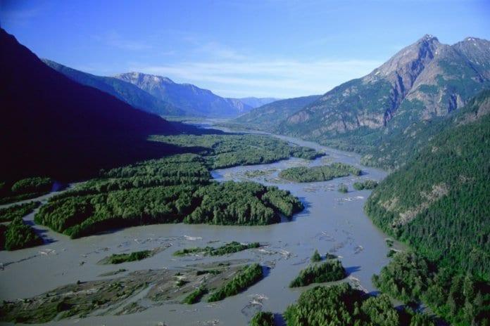 free run river