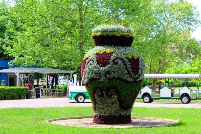 30 000 цветя красят