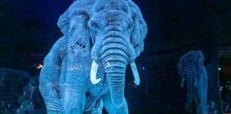 circus holograms