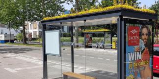 Холандия и Норвегия с грижа за пчелите