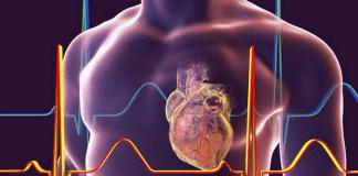 Учени откриха клетки, които лекуват сърцето