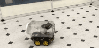Шофьорски курсове за плъхове