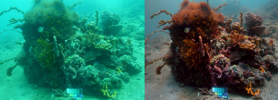 Технология маха водата от подводни снимки